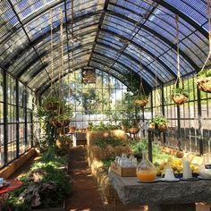 Serre du petit déjeuner  à Babylonstoren Ferme Hotel  en Afrique du Sud dans la région des vignes, à 1H de Cape Town