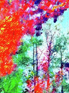 Colorful Nature Mixed Media - Colorful Nature by Daniel Janda