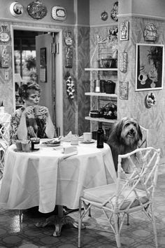 """And when she calls Blanche out, again - 22 Times Dorothy Shut Down Rose and Blanche on The Golden Girls - Southernliving. [Blanche running after a dog]Dorothy: """"Ha! Would you look at that: man's best friend, chasing man's best friend!"""""""