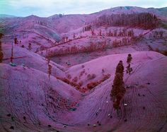 wetheurban: Stunning Pink Landscapes of Congo, Richard Mosse A beautifully calm and vast pink landscape carries an equally large history. Though it appears to be a land of fairy tales, it is, in fact, the tormented territory of the Congo. Keep reading Brainstorm, Color Rosa, Pink Color, Bright Colors, Antigua Yugoslavia, Richard Mosse, The Doors Of Perception, Infrared Photography, Documentary Photographers