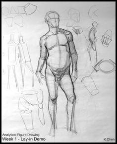 Analytical Figure Drawing SP08: Week 1 - Process Breakdown Demo