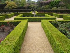 This beautiful heritage garden incorporates our paving which also helps to return water to the plants with it being fully permeable