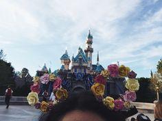 Free bee because it's summer in Disneyland