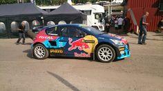 The Peugeot fromTimerzyanov - Team Peugeot Hansen