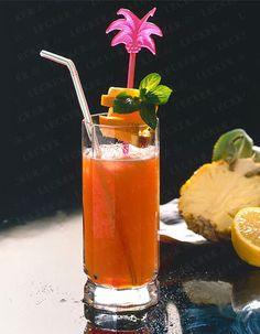 Longdrinks - Gin-Tonic & Co. - longdrinks-066 Rezept
