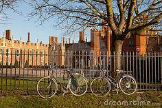 Hampton Court Bicycles by Edmund Holt, via Dreamstime