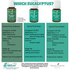 """Eucalyptus, Eucalyptus, Eucalyptus There are over 700 species of eucalyptus according to wikipedia. So when you buy an oil that is just labeled as """"eucalyptus"""", which of these 700 species are you..."""