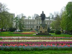 Tulips Symphony in Pitesti Romania, Coco, Tulips, Abandoned, Wallpapers, Mansions, Country, House Styles, Places