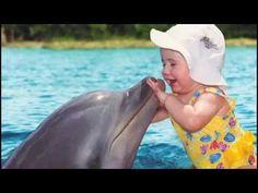 Dolphin Speaks! (HD Version)