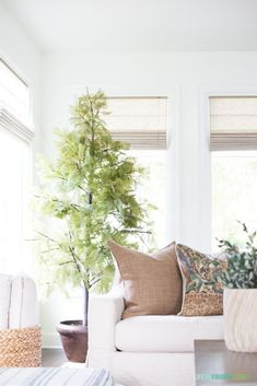 Cozy Fall living room with neutral tones and greenery accents, including this faux cypress tree.  I love our York Pottery Barn sofa and our new fireplace! Early Fall home tour with fall decor. #kitchencabinets #falldecor #fallstyle #home #homedecor #homedesign #living #livingroomideas #livingroomdecor #livingroomdecorideas #livingrooms