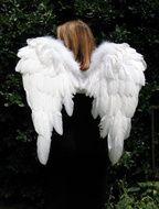 Como fazer asas de anjo