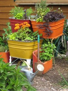 old galvanized tubs, painted bright colors & used as planters...