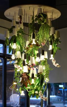 This is so cool.  I love that orchids are growing in the fixture too!  Want.