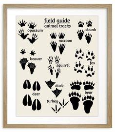 Nursery art, Woodland animal tracks