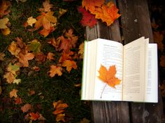 It's fall y'all despite summer temps where I live I am beginning to watch the leaves change! Fall is one of my favorite seasons what's yours? 🍁🍂🍁 Fall in love with God's word! Make reading it a privilege not a punishment! Tea And Books, I Love Books, Good Books, Books To Read, Reading Books, Reading Time, Autumn In New York, Autumn Day, Autumn Leaves