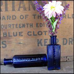 Antique Cobalt Blue Poison Bottles Marked Not by pathwaytothepast