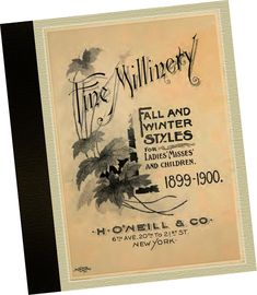 0076f31959b H O Neill   Co 1899 Fine Millinery CATALOGUE fall + winter Ladies Hat  Samples