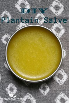 DIY Plantain Salve Recipe {Soothes and Heals} - Herbs are great for healing and soothing, and this DIY plantain salve is no exception. Add this to your DIY list today and have healing salve at your fingers!