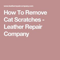 How To Remove Cat Scratches - Leather Repair Company