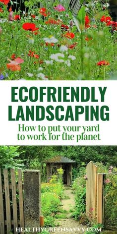 Eco Friendly Landscaping Benefits You And The Planet Save Money, Improve Air Quality, And Capture Carbon In Your Yard With These Strategies. Set Your Yard To Work For The Planet Gardening For Beginners, Gardening Tips, Gardening Vegetables, Flower Gardening, Caricature, Landscape Design, Garden Design, Creative Landscape, Urban Landscape