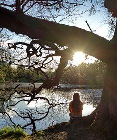 Basking the sun #lake #tree #reflection #girl #dreadlocks