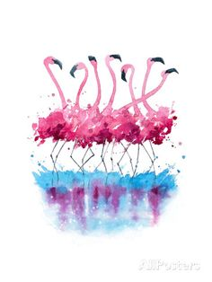 Flamingos Watercolor Painting Prints by Kamenuka - AllPosters.co.uk