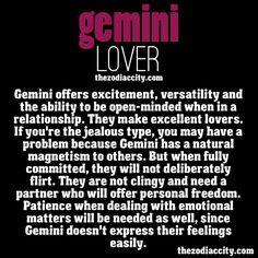 Zodiac Files: The Gemini lover.