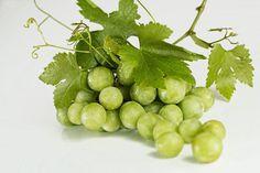 Strugurii, ne apara de cancer Green Fruit, Green Grapes, Red Green, Black Grapes, Wine Tasting Course, Chardonnay Wine, Grape Recipes, Fruit Recipes, Wine Sale