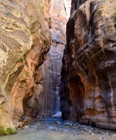 The Narrows ~ Zion National Park