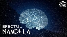 14 Mandela Effect Examples That Will Mess With Your Brain Mandela Effect Examples, Funny Puzzles, Quantum Physics, Your Brain, Cute Pictures, Weird, Spelling, Strange Things, Rubicon