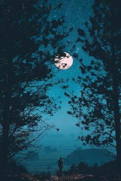 きれいな月!