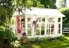 Kasvihuone, joka on rakennettu vanhoista ikkunoista.