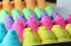 Peeps! I've never been so obsessed with another sugary substance so much in my life time