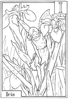 Flower Fairies Coloring Pages from www.coloring-pages-and-more.comi_fairy.gif 887×1,286 pixels