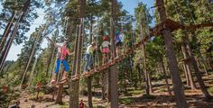North Tahoe Adventures: The Tahoe Treetop Adventure Park, in Tahoe City, has tree platforms and zip lines. Our Squaw location includes a Ropes Course, Skyjump Bungee Trampoline, Climbing Wall, and Mini Golf course.