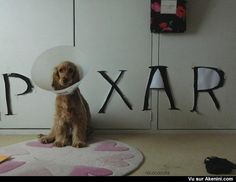 Le chien lampe Pixar The dog Pixar lamp