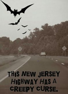 New Jersey's Indian Curse road most definitely seems cursed. Based on the footage, it also seems haunted. Scary Places, Haunted Places, Haunted Tours, Creepy Things, Creepy Stuff, Abandoned Places, Real Haunted Houses, Most Haunted, Scary Stories