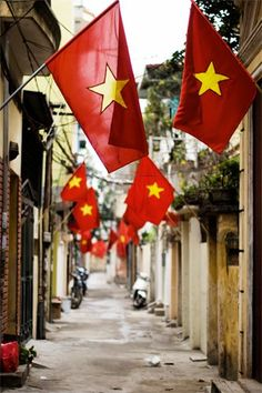 Vietnamese Flags