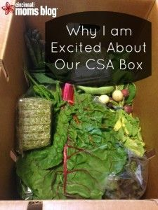 Why I am Excited About our CSA Produce Box | Cincinnati Moms Blog