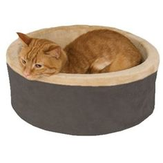 K™ Heated Thermo-Kitty Beds™ - Pet Supplies, Pet Supply, Pet Dog, Dog Supplies, Pet Products, cat supplies, fish supplies, dog food, cat food, pet dog, Care A Lot Pet Supply