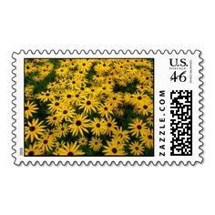 Rudbeckia Hirta (Black-eyed Susans) Postage Stamps