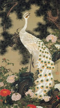 伊藤若冲 動植綵絵 老松孔雀図 Rosho Kujaku-zu(Old Pine Tree and Peacock)