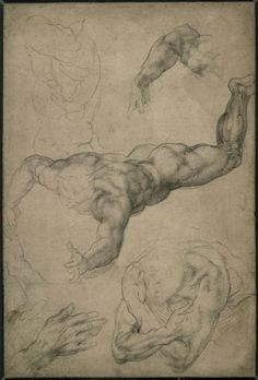 Michelangelo Sistine Chapel, drapery study for the Erythraean Sibyl ca. 1508-12 drawing British Museum Michelangelo, in the approve...