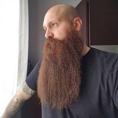 Bald With Beard, Bald Men, Beard Love, Grey Beards, Long Beards, Hair And Beard Styles, Long Hair Styles, Clean Shaven, Epic Beard