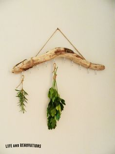 Simple DIY herb drying rack tutorial using driftwood and jute twine.