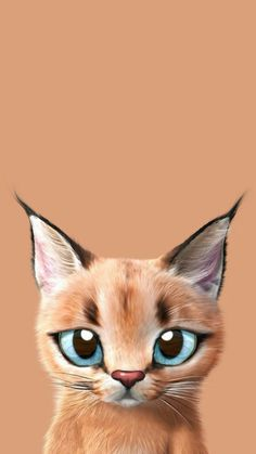 Check out this awesome collection of Kawaii Anime Cat wallpapers, with 39 Kawaii Anime Cat wallpaper pictures for your desktop, phone or tablet. Kitten Wallpaper, Animal Wallpaper, Orange Kittens, Cats And Kittens, Chatons Oranges, Backgrounds Wallpapers, Wallpapers Android, Gato Gif, Caracal