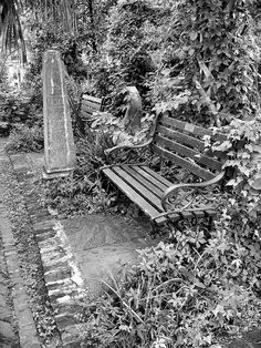 Cemetery...creepy