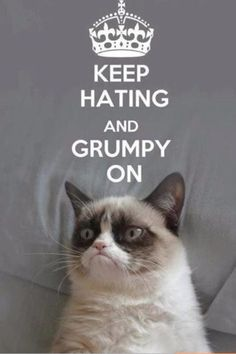 WOW I love grumpy cat don't be hating on grumpy cat. grumpy cat is my spirt animal Grumpy Cat Quotes, Funny Grumpy Cat Memes, Cat Jokes, Funny Animal Memes, Funny Cats, Funny Jokes, Funny Animals, Cats Humor, Meme Comics