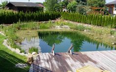 Schwimmteich Fotos, Schwimmteich Bilder, Gartenteich Bilder, Teichfotos & Teichbilder - honcak.at
