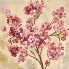 Pink Cherry Branch I Canvas Art - Silvia Vassileva (24 x 24)